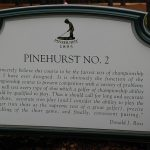 Do you like the new brown or the old green Pinehurst #2?