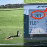 Do weighted clubs improve clubhead speed?