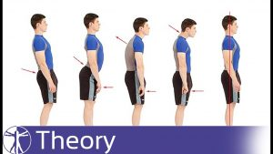 Roger Fredericks Two Easy Exercises for C-Curve Posture.